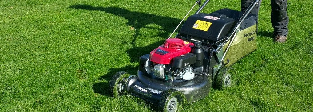 Grass cutting and lawn maintenance